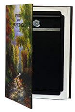 BARSKA Hidden Real Book Gun Safe