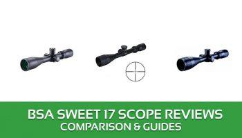 BSA Sweet 17 Scope Reviews