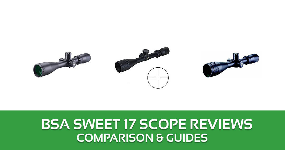 BSA Sweet 17 Scope Reviews