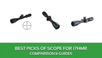 Best Picks Of Scope For 17hmr