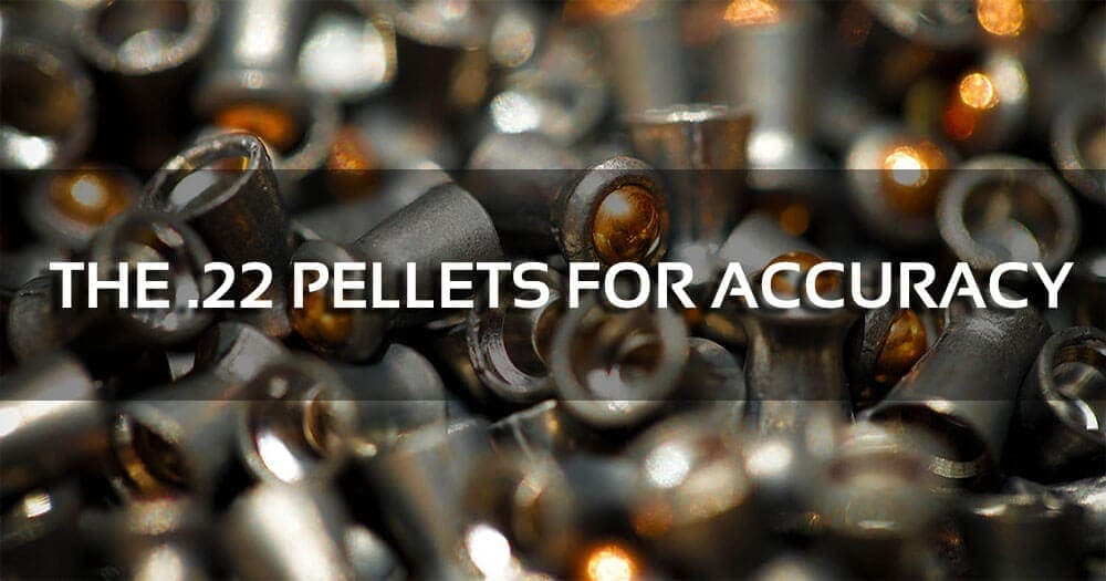 The 3 Best .22 Pellets for Accuracy
