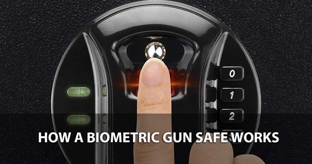 How a Biometric Gun Safe Works 1